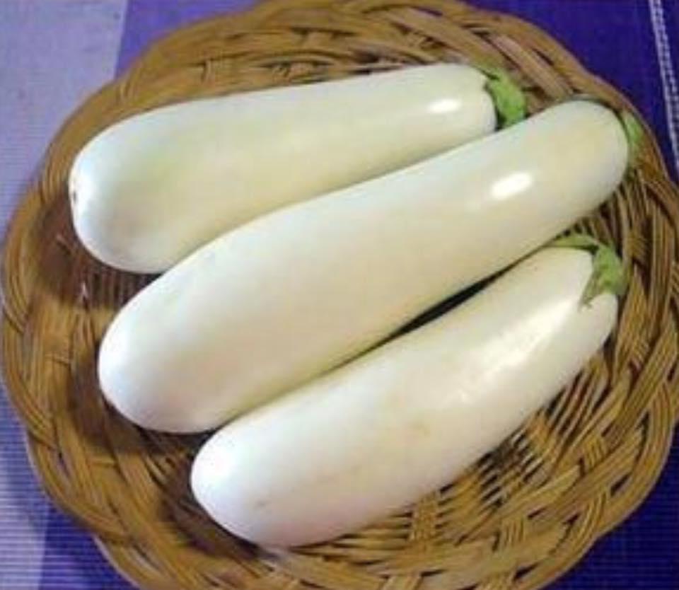 「白い茄子」があるのをご存知ですか